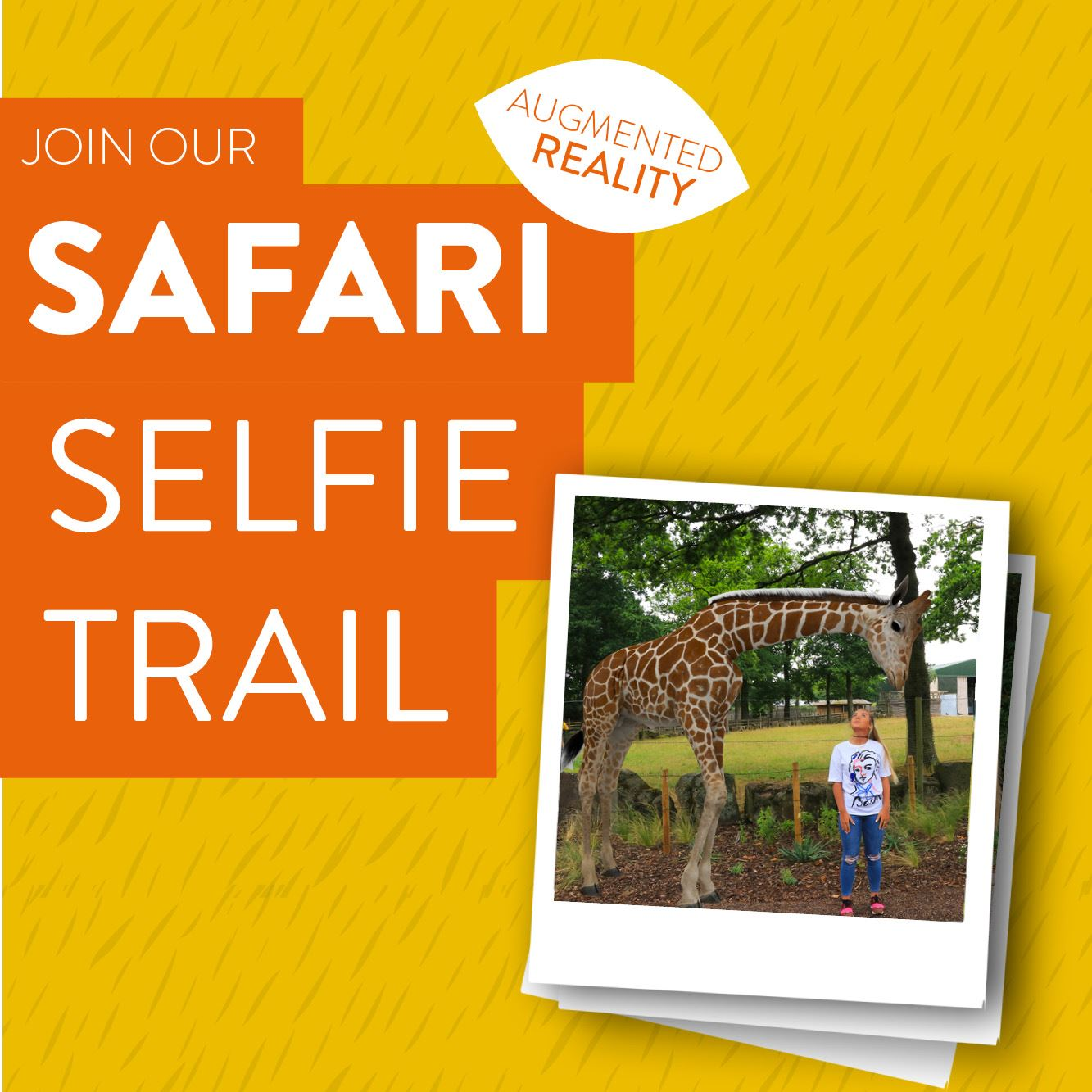 Join our Safari Selfie Trail